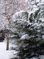havas bejárat