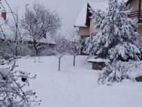 havas kert